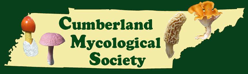 Cumberland Mycological Society logo