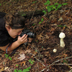 Christine photgraphing an Amanita