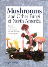 Mushrooms of North America by Phillips